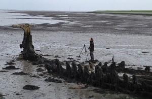 fotograaf rotterdam