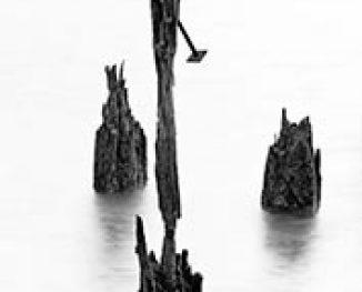 Eb & Vloed (2008)