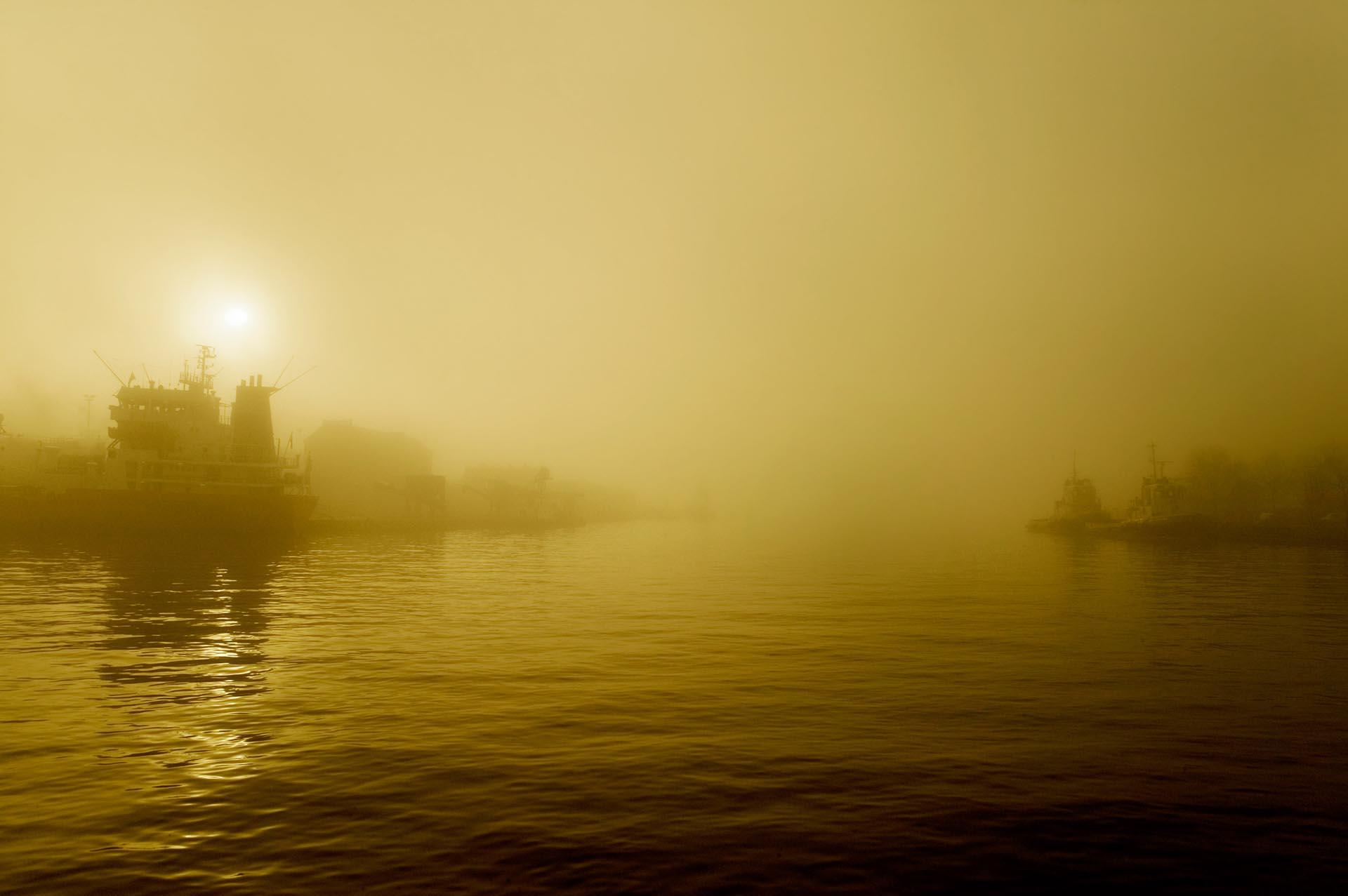 Wilhelminahaven in dichte mist