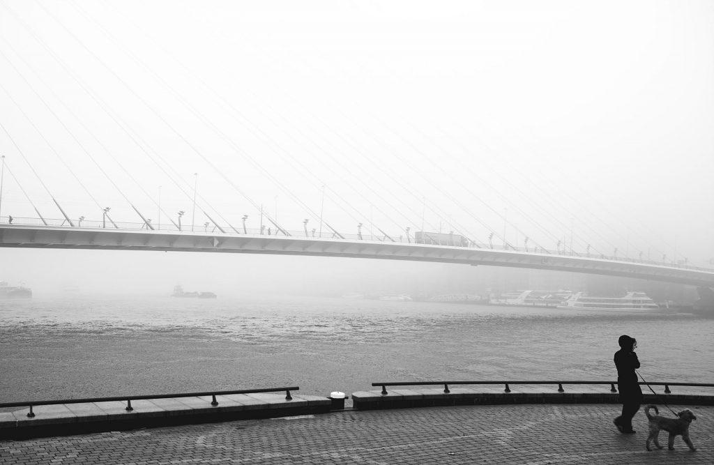 fotograaf Noordereiland rotterdam