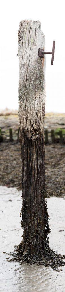 oude steiger